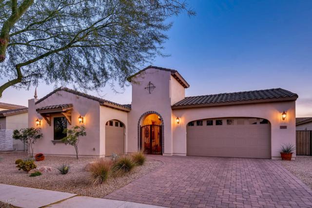 3869 E Lynx Place, Chandler, AZ 85249 (MLS #5875176) :: The Daniel Montez Real Estate Group