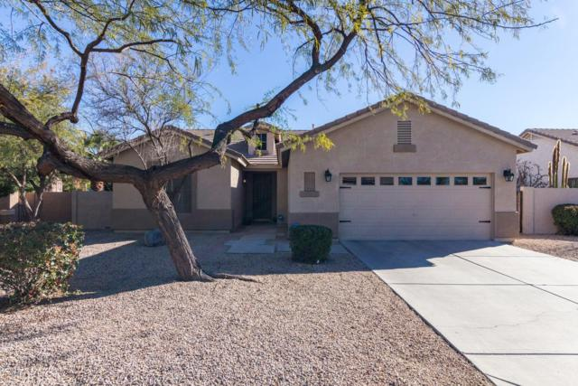 1895 S Jacana Lane, Gilbert, AZ 85295 (MLS #5875181) :: The Laughton Team