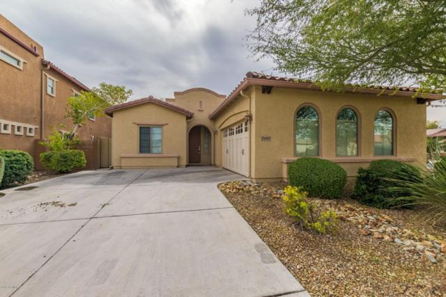 15693 W Mackenzie Drive, Goodyear, AZ 85395 (MLS #5875235) :: CC & Co. Real Estate Team