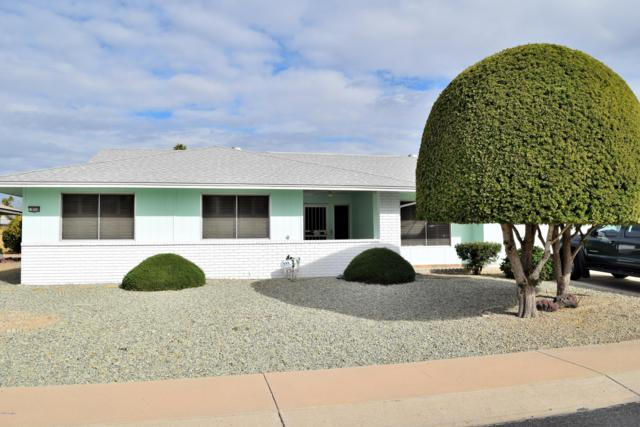 9710 W Hawthorn Court, Sun City, AZ 85351 (MLS #5875322) :: Arizona 1 Real Estate Team