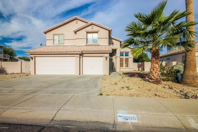 2920 N 113TH Avenue, Avondale, AZ 85392 (MLS #5875350) :: The Results Group