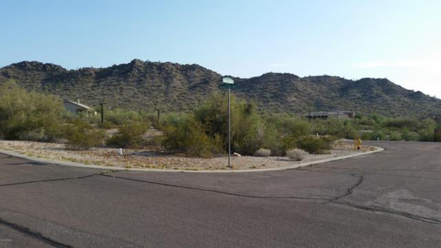 9400 S Krista Drive S, Goodyear, AZ 85338 (MLS #5875367) :: Nate Martinez Team