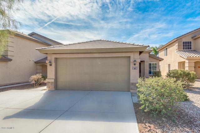 1463 E Stirrup Lane, San Tan Valley, AZ 85143 (MLS #5875375) :: Yost Realty Group at RE/MAX Casa Grande