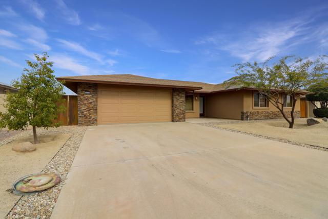 10326 W Sutters Gold Lane, Sun City, AZ 85351 (MLS #5875380) :: Occasio Realty
