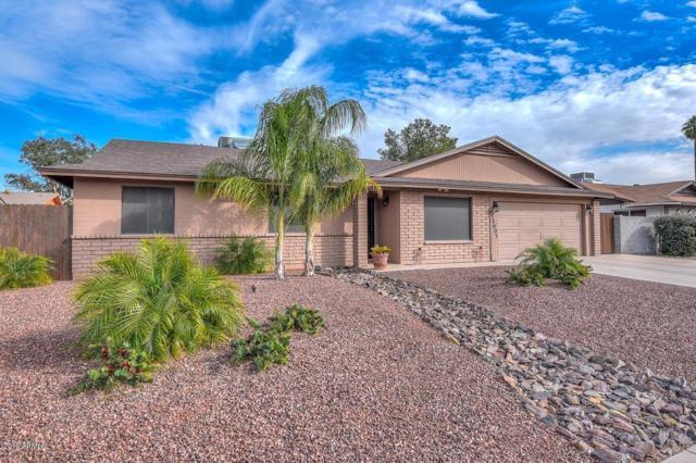 11007 N 39TH Drive, Phoenix, AZ 85029 (MLS #5875392) :: Yost Realty Group at RE/MAX Casa Grande