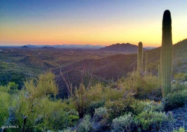 41414 N Brangus Road, Scottsdale, AZ 85262 (MLS #5875422) :: Yost Realty Group at RE/MAX Casa Grande