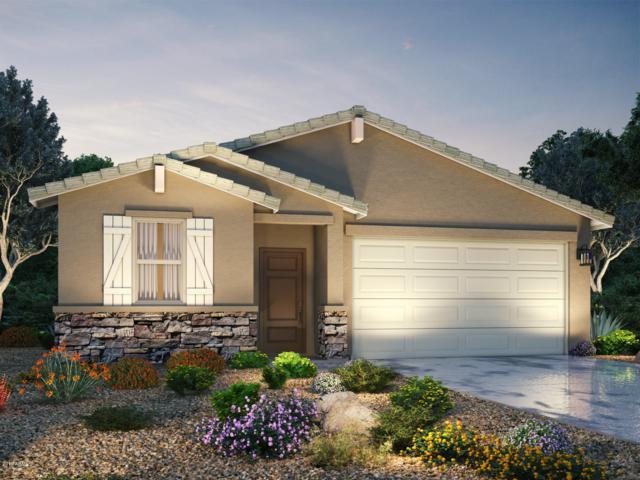 9812 W Getty Drive, Tolleson, AZ 85353 (MLS #5875430) :: CC & Co. Real Estate Team