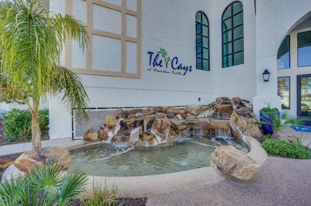 2511 W Queen Creek Road #236, Chandler, AZ 85248 (MLS #5875431) :: Lux Home Group at  Keller Williams Realty Phoenix