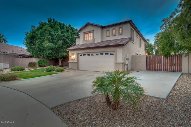 7483 W Potter Drive, Glendale, AZ 85308 (MLS #5875443) :: The Property Partners at eXp Realty