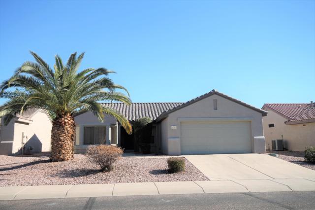18313 N Shimmer Lane, Surprise, AZ 85374 (MLS #5875538) :: CC & Co. Real Estate Team