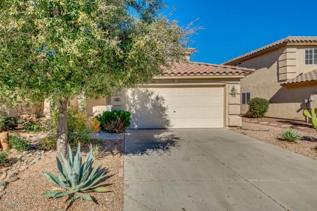 1128 E Mayfield Drive, San Tan Valley, AZ 85143 (MLS #5875580) :: The Property Partners at eXp Realty