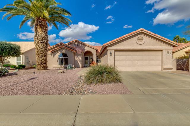 462 W Teakwood Drive, Chandler, AZ 85248 (MLS #5875650) :: CC & Co. Real Estate Team