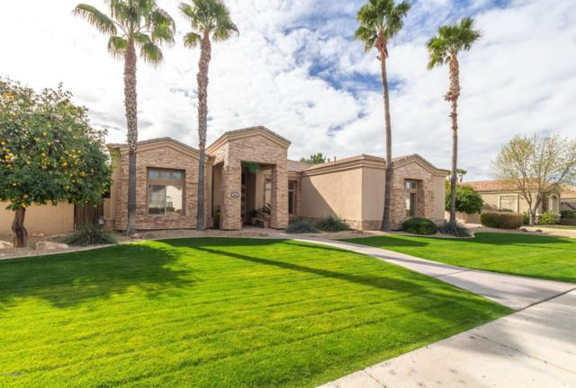 4467 E Encinas Avenue, Gilbert, AZ 85234 (MLS #5875657) :: The Property Partners at eXp Realty