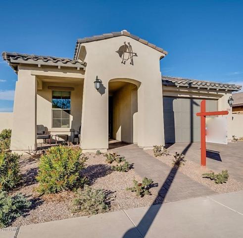 5218 S Abbey, Mesa, AZ 85212 (MLS #5875665) :: The W Group