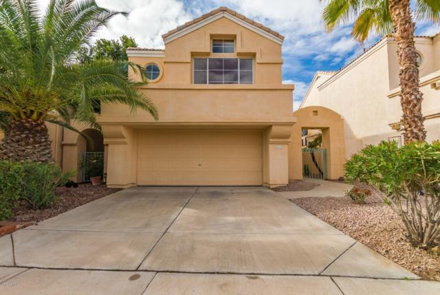 16026 S 11th Place, Phoenix, AZ 85048 (MLS #5875769) :: Yost Realty Group at RE/MAX Casa Grande
