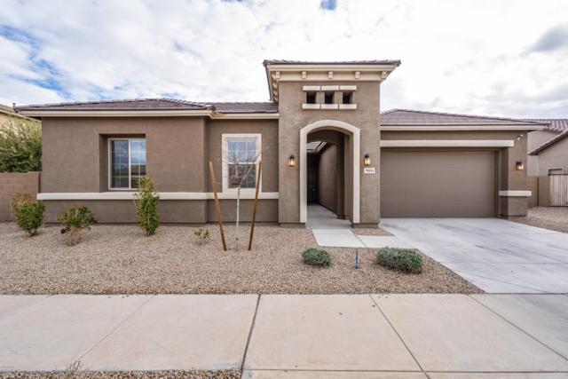 9005 S 55TH Drive, Laveen, AZ 85339 (MLS #5875779) :: Arizona 1 Real Estate Team