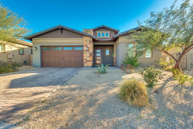 18615 W Acacia Drive, Goodyear, AZ 85338 (MLS #5875788) :: Arizona 1 Real Estate Team