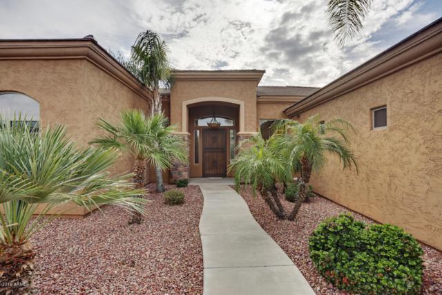 18017 W Montebello Avenue, Litchfield Park, AZ 85340 (MLS #5875790) :: Yost Realty Group at RE/MAX Casa Grande