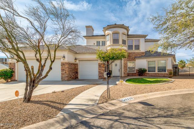 8226 N 15TH Place, Phoenix, AZ 85020 (MLS #5875810) :: Yost Realty Group at RE/MAX Casa Grande