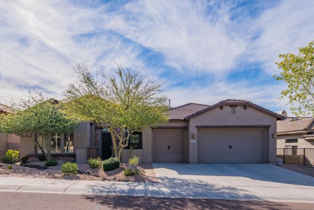 26850 N 90th Avenue, Peoria, AZ 85383 (MLS #5875815) :: Yost Realty Group at RE/MAX Casa Grande