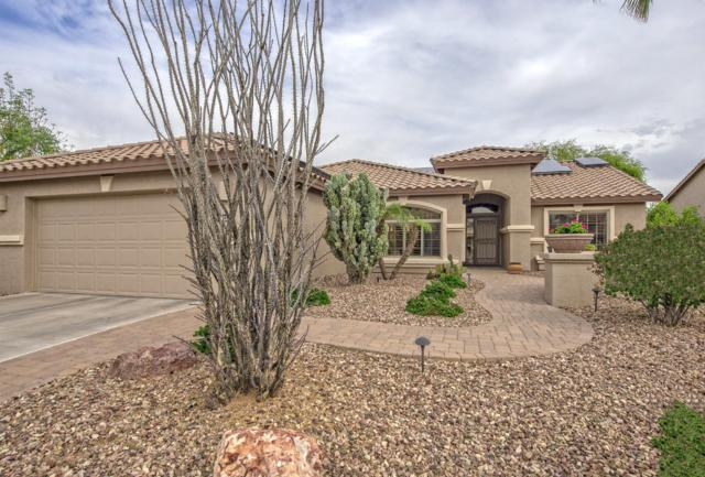2863 N 157TH Avenue, Goodyear, AZ 85395 (MLS #5875824) :: Arizona 1 Real Estate Team