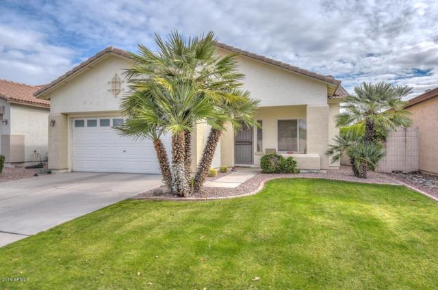 3755 N 141ST Drive, Goodyear, AZ 85395 (MLS #5875830) :: The Property Partners at eXp Realty