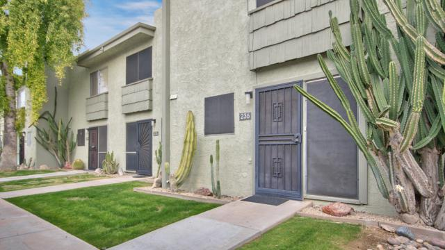 4630 N 68TH Street #236, Scottsdale, AZ 85251 (MLS #5875840) :: The Everest Team at My Home Group