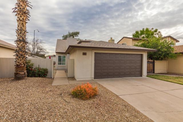 461 N Orlando Circle, Mesa, AZ 85205 (MLS #5875902) :: Yost Realty Group at RE/MAX Casa Grande