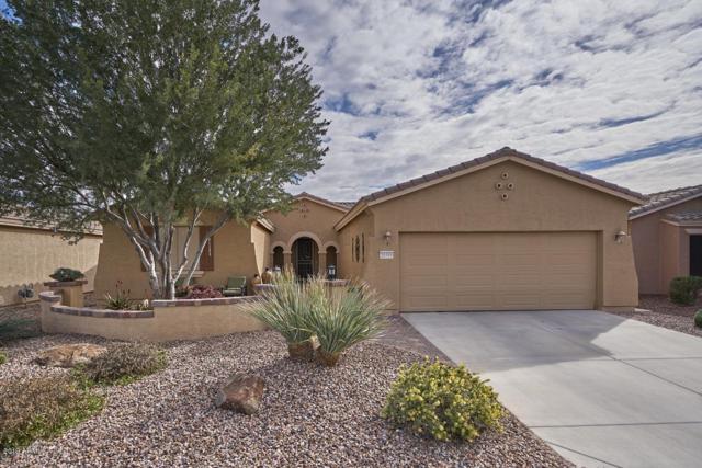20509 N Enchantment Pass, Maricopa, AZ 85138 (MLS #5875973) :: Yost Realty Group at RE/MAX Casa Grande