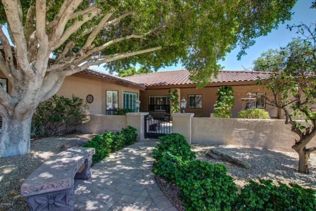 12027 S Tuzigoot Drive, Phoenix, AZ 85044 (MLS #5875981) :: Yost Realty Group at RE/MAX Casa Grande