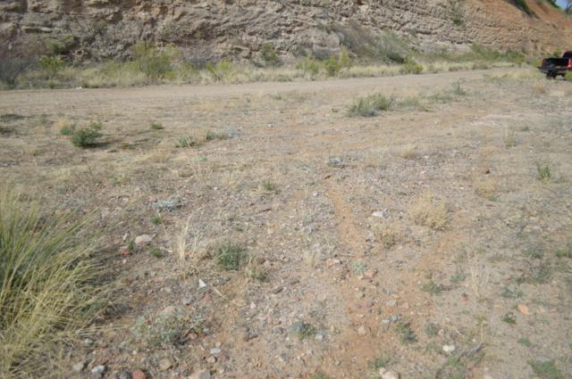 TBD S Pinaleno Pass, Globe, AZ 85501 (MLS #5875992) :: Yost Realty Group at RE/MAX Casa Grande