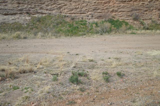 TBD S Pinaleno Pass, Globe, AZ 85501 (MLS #5875994) :: Yost Realty Group at RE/MAX Casa Grande