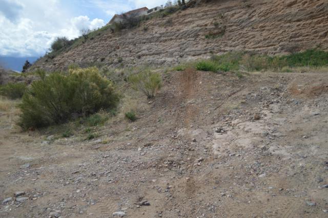157 S Pinaleno Pass Pass, Globe, AZ 85501 (MLS #5875997) :: Yost Realty Group at RE/MAX Casa Grande