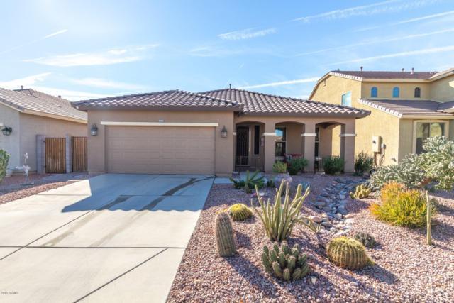 1193 W Desert Glen Drive, San Tan Valley, AZ 85143 (MLS #5876101) :: Yost Realty Group at RE/MAX Casa Grande
