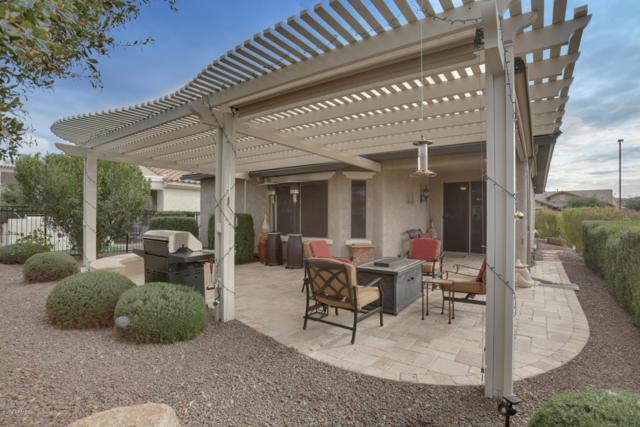 20062 N 270th Avenue, Buckeye, AZ 85396 (MLS #5876118) :: CC & Co. Real Estate Team