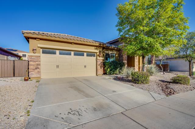 2424 E Robb Lane, Phoenix, AZ 85024 (MLS #5876265) :: Occasio Realty