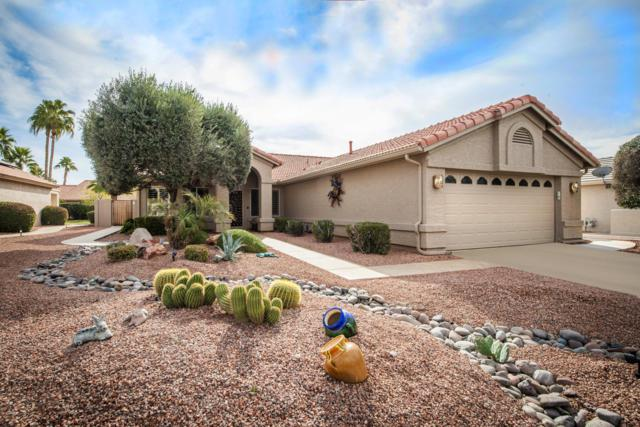 23709 S Rosecrest Drive, Sun Lakes, AZ 85248 (MLS #5876300) :: Occasio Realty