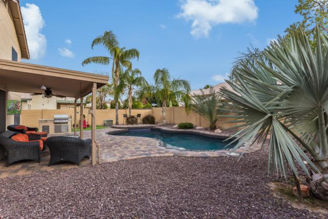 5537 W Tonopah Drive, Glendale, AZ 85308 (MLS #5876393) :: Relevate   Phoenix