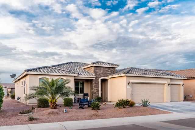 41683 W Snow Bird Lane, Maricopa, AZ 85138 (MLS #5876461) :: Revelation Real Estate