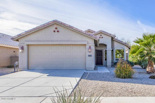 2597 E Santa Maria Drive, Casa Grande, AZ 85194 (MLS #5876472) :: Yost Realty Group at RE/MAX Casa Grande