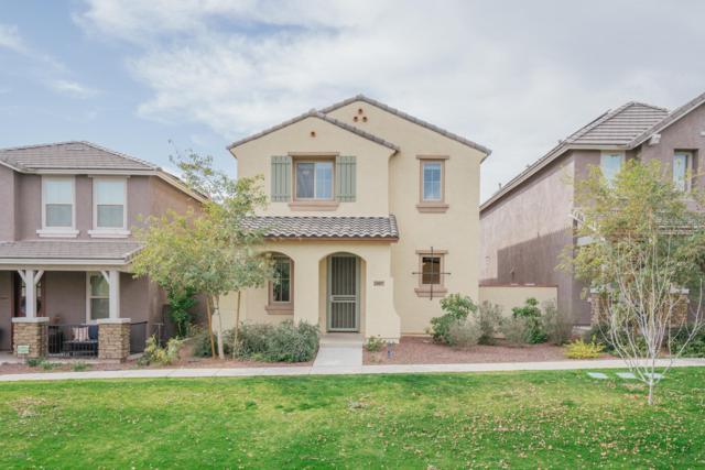 20897 W Maiden Lane, Buckeye, AZ 85396 (MLS #5876479) :: Riddle Realty