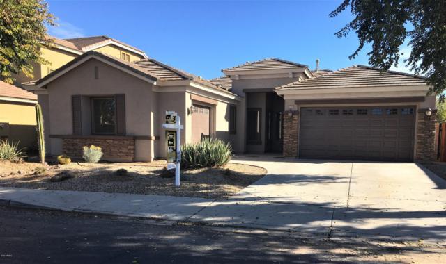 4195 S Cambridge Street, Chandler, AZ 85249 (MLS #5876616) :: Yost Realty Group at RE/MAX Casa Grande