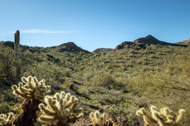 10500 E Lost Canyon Drive, Scottsdale, AZ 85255 (MLS #5876629) :: Yost Realty Group at RE/MAX Casa Grande
