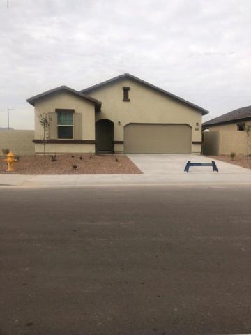 20228 W Mesquite Drive, Buckeye, AZ 85326 (MLS #5876632) :: RE/MAX Excalibur