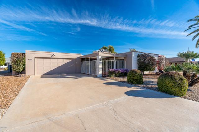 10236 W Edgewood Drive, Sun City, AZ 85351 (MLS #5876638) :: The Pete Dijkstra Team
