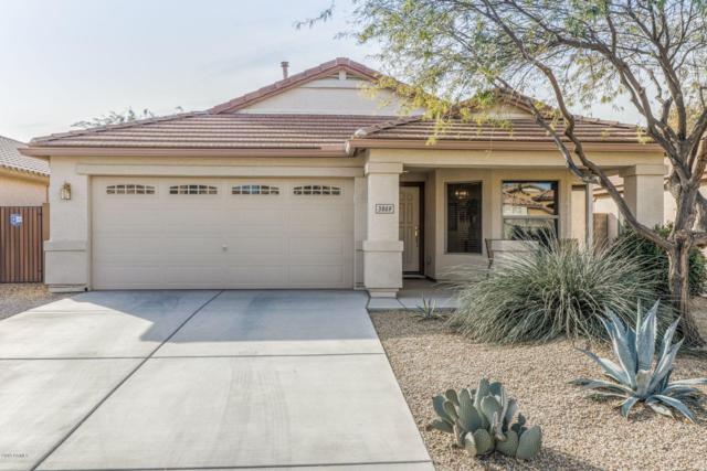 3869 E Hematite Lane, San Tan Valley, AZ 85143 (MLS #5876661) :: Gilbert Arizona Realty