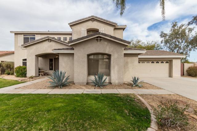 20850 E Shetland Street, Queen Creek, AZ 85142 (MLS #5876695) :: Yost Realty Group at RE/MAX Casa Grande