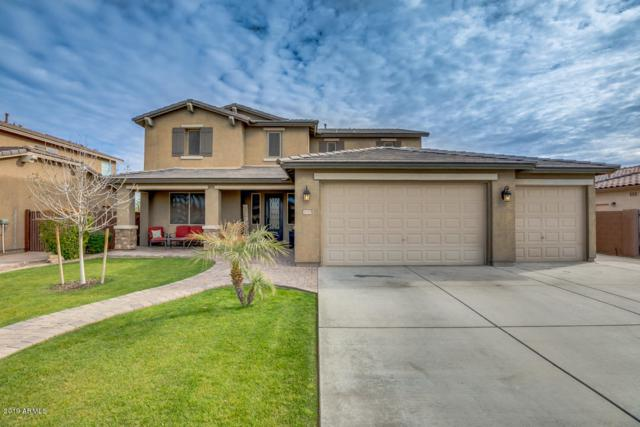 41195 N Linden Street, Queen Creek, AZ 85140 (MLS #5876717) :: Yost Realty Group at RE/MAX Casa Grande