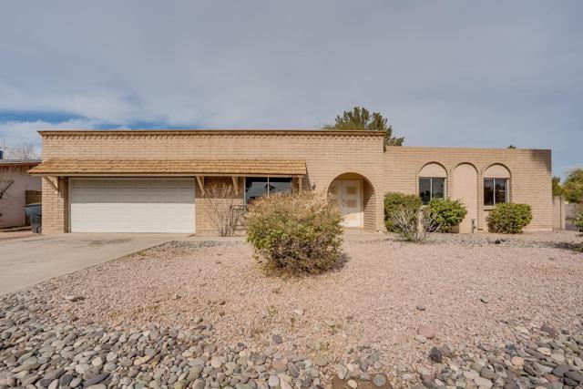 2302 W Del Campo Circle, Mesa, AZ 85202 (MLS #5876724) :: The W Group