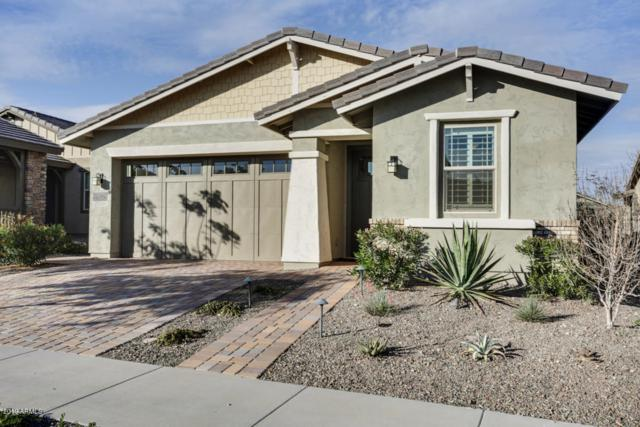 20772 W Meadowbrook Avenue, Buckeye, AZ 85396 (MLS #5876834) :: The Results Group